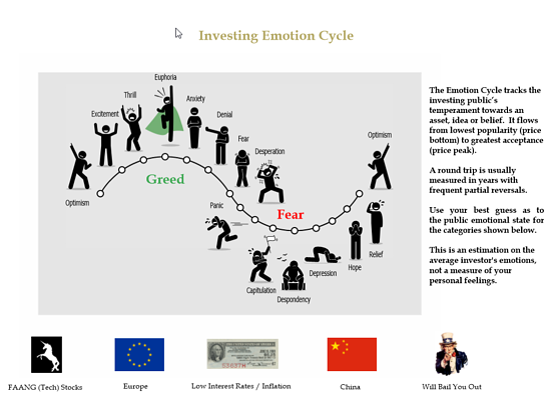 Investor Emotion